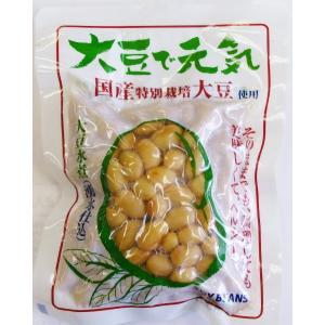 大豆で元気(100g)|tandi