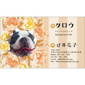 ペット名刺デザイン007(PETTO-007)|tandp