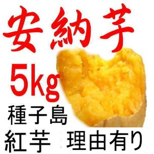 安納芋 種子島産さつまいも・訳あり 5kg/日本一の安さに挑...