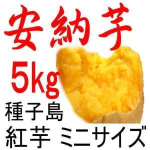 安納芋 種子島産さつまいも・チビころ(ミニの2S)/5kg/...