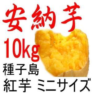 安納芋 種子島産さつまいも・チビころ(ミニ・2S)/10kg...