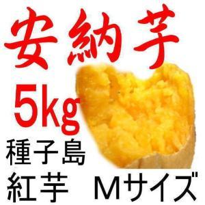 安納芋 種子島産さつまいも・Mサイズ/5kg/贈り物には最適...