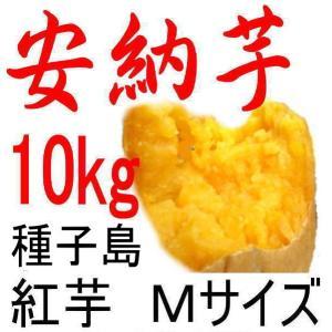安納芋 種子島産さつまいも・Mサイズ/10kg/贈り物には最...