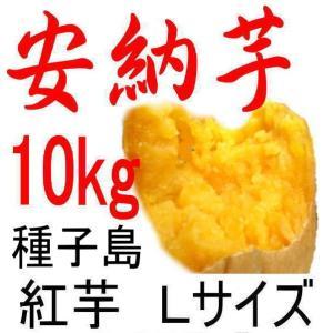 安納芋 Lサイズ/10kg/種子島産/密がたっぷりで旨い。だ...