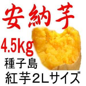 安納芋 種子島産さつまいも・2Lサイズ/4.5kg/密がたっ...