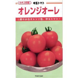 カネコ種苗 トマト オレンジオーレ 小袋 tanemori-netshop