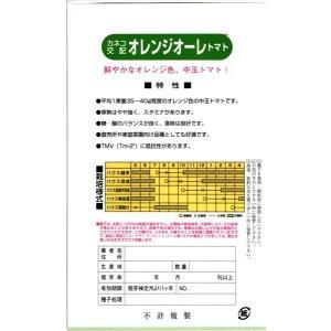 カネコ種苗 トマト オレンジオーレ 小袋 tanemori-netshop 02