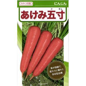 カネコ種苗 人参 ニンジン あけみ五寸 コート1万粒  葉が強健で、肥大力に優れた多収型品種