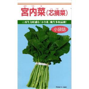 カネコ種苗 カキナ かき菜 宮内菜 小袋  再生力旺盛な「かき菜」晩生多収品種!