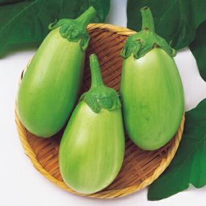 ナカハラのたね ナス 白丸茄子 小袋  耐暑性が強く、アクが少ない品質極上の白丸ナス!!