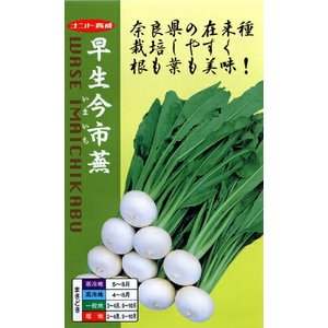 ナント種苗 カブ 早生今市蕪(わせいまいちかぶ) 小袋