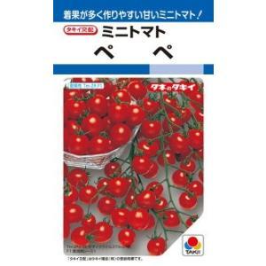 タキイ種苗 トマト ペペ 1000粒  作りやすいミニで多収!甘さ良好!