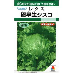 小袋 1.1ml入り。 <BR>※レタスの発芽適温は15〜20℃と低めです。<BR...