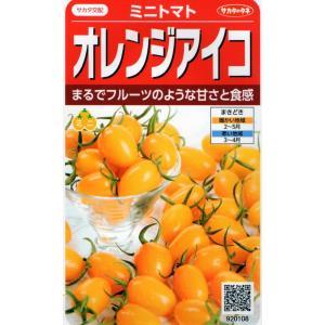 ミニトマト オレンジアイコ 小袋 13粒入り 郵便発送商品