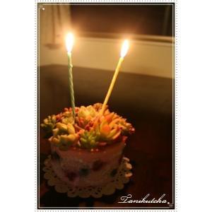 ■デコトハ タルトケーキ  ●サプライズプレゼントに ●大切な人に、母の日に ●お返しやお祝いに  ...