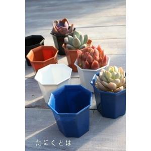 シャトル鉢2寸 100個 六角 白 黒 青 苗用 小さな多肉植物にピッタリ 多肉植物用プラ鉢 プラスチック鉢通販
