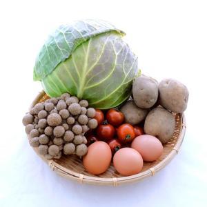 お買得お試しセット 野菜+豆腐、納豆、卵で2000円(商品+送料) ※初回の方限定