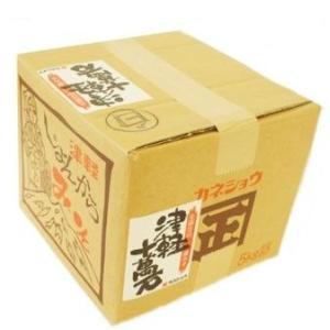 津軽十万石味噌(白) 5kg家庭用ダンボール入 (カネショウ) tanken
