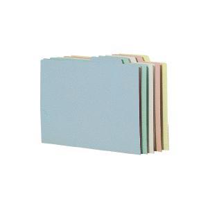 コクヨ 個別フォルダー(カラー・エコノミータイプ) A4 青 A4−SIFN−B 1パック(10冊)