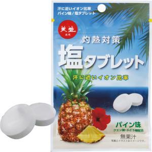 赤穂化成 塩タブレット パイン味 33g 1袋