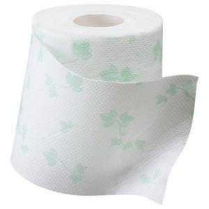 大王製紙 シャワートイレのためにつくった吸水力が2倍のトイレットペーパー ダブル 芯あり 23m 1セット(72ロール:12ロール×6パック)|tanomail|02