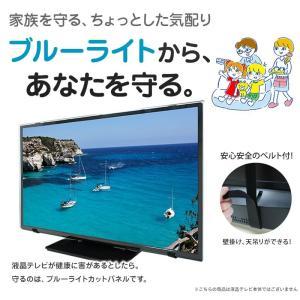 液晶テレビ保護パネル ブルーライトカット 43型 43インチ ベルト付 カット率44.73% 液晶テレビ 保護 パネル 2mm厚 43MBL4|tanonmasuwa|02