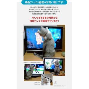 液晶テレビ保護パネル ブルーライトカット 43型 43インチ ベルト付 カット率44.73% 液晶テレビ 保護 パネル 2mm厚 43MBL4|tanonmasuwa|09