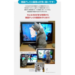 液晶テレビ保護パネル ブルーライトカット 40型 40インチ ベルト付 カット率44.73% 液晶テレビ 保護 パネル 2mm厚 40MBL4|tanonmasuwa|09