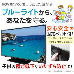 液晶テレビ保護パネル ブルーライトカット 49・50型 49・50インチ ベルト付 カット率44.73% 液晶テレビ 保護 パネル 3mm厚 49・50MBL4|tanonmasuwa|02