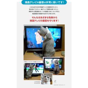 液晶テレビ保護パネル クリアパネルベルト付 43型 43インチ 液晶テレビ 保護パネル 2mm厚 T43-B tanonmasuwa 06
