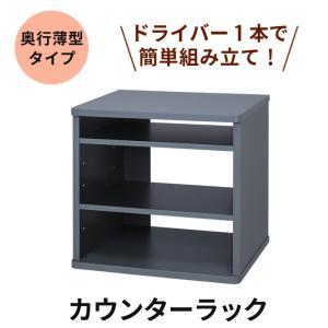 カウンターラック MKB-CR30  カラオケラック 組み立て簡単シリーズ 奥行薄型タイプ tanonmasuwa