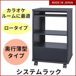 システムラック MKB-R15 カラオケラック 奥行薄型タイプ(電子目次本用スタンド取付可能)|tanonmasuwa
