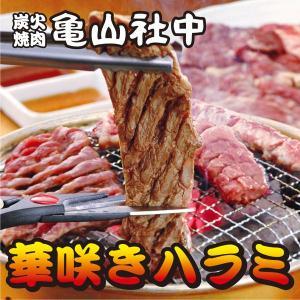 亀山社中 華咲きタレ漬けハラミ 300g (BBQ バーベキュー)