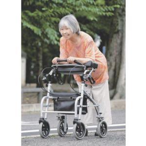 歩行補助車 ラビット WA-7 座面なしタイプ (トールタイプ)  歩行器 リハビリ 歩行補助 介護  hkz|tanosinia