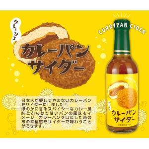 カレーパンサイダー×1本|tansanriki