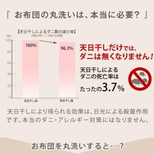肌掛け布団 掛布団 シングル 日本製 夏 洗える肌掛け布団 羽毛タッチ 肌布団 国産 肌かけ 肌ふとん ft綿 ウォッシャブル tansu 09