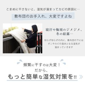 除湿シート 湿気取りマット 除湿マット シングル 日本製 除湿 シート 帝人 ベルオアシス 吸湿マット 湿気対策|tansu|03