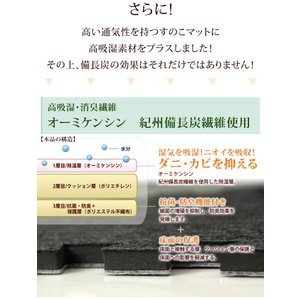 すのこ除湿マット エアジョブ TEIJIN ダブル 日本製 備長炭 消臭 すのこ型除湿マット テイジン ベルオアシス すのこマット 国産 湿気対策 除湿シート|tansu|05