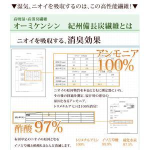 すのこ除湿マット エアジョブ TEIJIN ダブル 日本製 備長炭 消臭 すのこ型除湿マット テイジン ベルオアシス すのこマット 国産 湿気対策 除湿シート|tansu|06