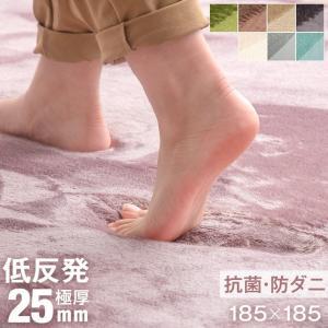 ラグ 厚手 ラグマット 2畳 185×185 カーペット 滑り止め付 リビングマット 低反発 正方形 防ダニ ホットカーペット 床暖房 防音 絨毯 シンプル