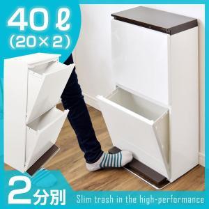 ゴミ箱 おしゃれ ごみ箱 2分別 20L×2 分別用ごみ箱 ふた付き 分別 キッチン リビング 分別ゴミ箱 縦型 ダストボックス くず入れ くずかご スリム