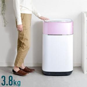 洗濯機 3.8kg 一人暮らし 縦型洗濯機 全自動洗濯機 5つの洗濯コース チャイルドロック 1年保証 小型 槽洗浄 風乾燥 省スペース 新生活 おしゃれ シンプルの画像