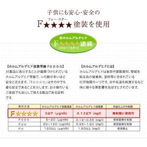 二段ベッド 2段ベッド シングル カントリー調 天然木 パイン材 木製大型商品 tansu 16