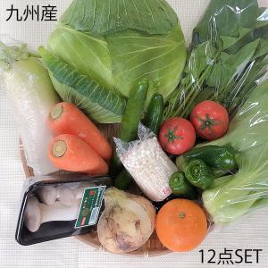野菜セット 九州産 冷蔵便 詰め合わせ 送料無料 野菜 国産 日本製 九州 詰めあわせ つめあわせ ...