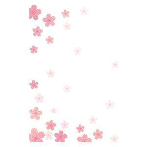 私製 5枚 桜さくら 寒中・余寒見舞いに  pka-05 切手なし/裏面印刷済み/ポストカード|tantanjp