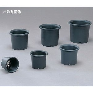 アイリスオーヤマ 4905009004720 菊鉢 6号 グレー tantanplus