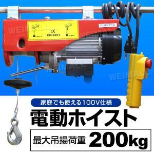 電動ホイストクレーン 電動ウインチ 吊り上げ 最大200kg リモコン付き ダブルフック シングルフック|tantobazarshop