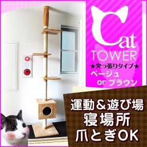 キャットタワー 天井突張り式 置き型 猫の隠れ家|tantobazarshop