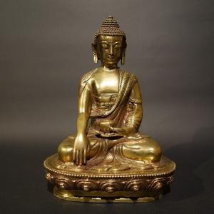 【仏像】釈迦如来 磨き仕上げ 20cm【送料無料】|taradou
