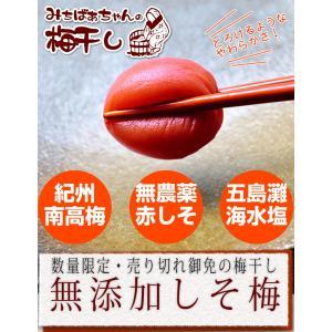 『みちばあちゃんの梅干し「しそ梅」』無添加 熱中症対策 夏バ...